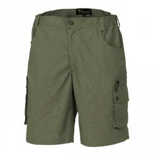 Pinewood Wildmark Shorts