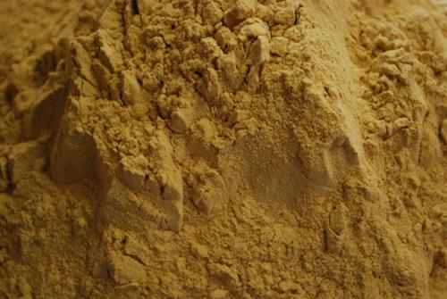 Mussel Extrakt Powder